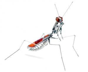 Mantis religiosa de Edouard Martinet