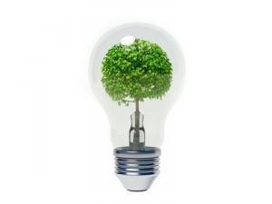 dia mundial de la eficiencia energetica