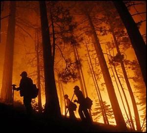 dia internacional del combatiente de incendios forestales