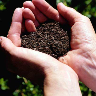 D a de la conservaci n del suelo rec clame for Materiales que componen el suelo