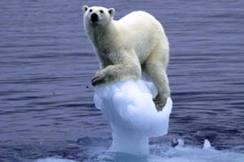 dia internacional contra el cambio climatico