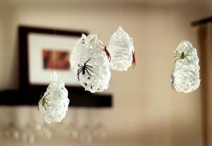 nidos de aracnidos